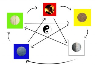 Understanding the Five Elements  How They May Show Up in You
